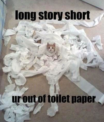 long-story-short-ur-out-of-toilet-paper