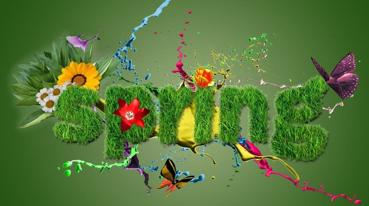 """Image result for spring is here"""""""