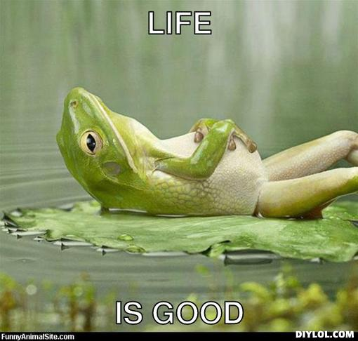 relaxing-meme-generator-life-is-good-9b3197
